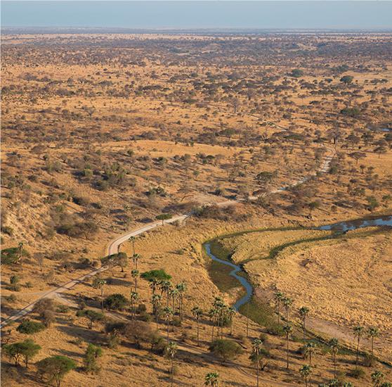 The Journey - Serengeti National Park