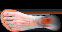 Top view of foot in shoe