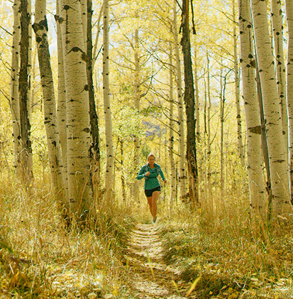 Trail Running Image Main