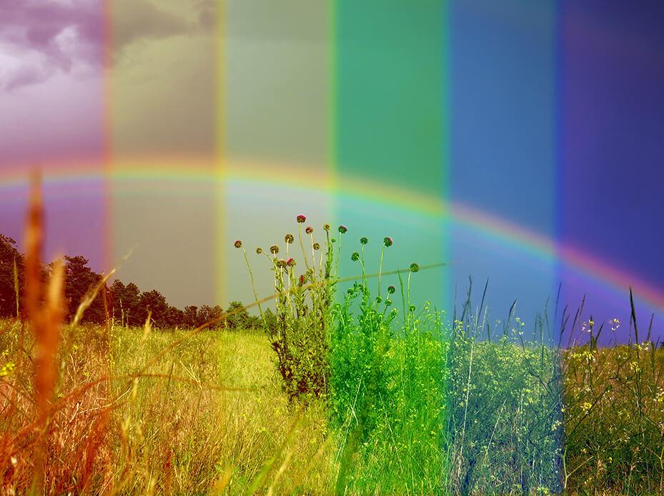 Rainbows on rainbows (but without being cliché)!