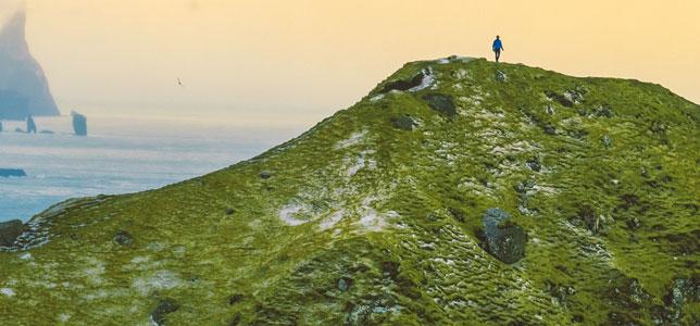 A beautiful green hillside overlooking the ocean.