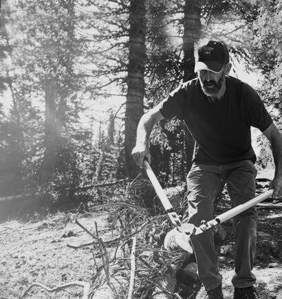A worker lops limbs from a fallen tree using long limb loppers.