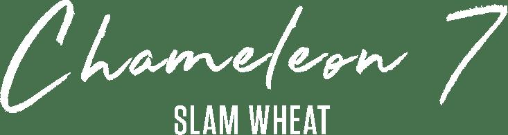Chameleon 7 Slam Wheat