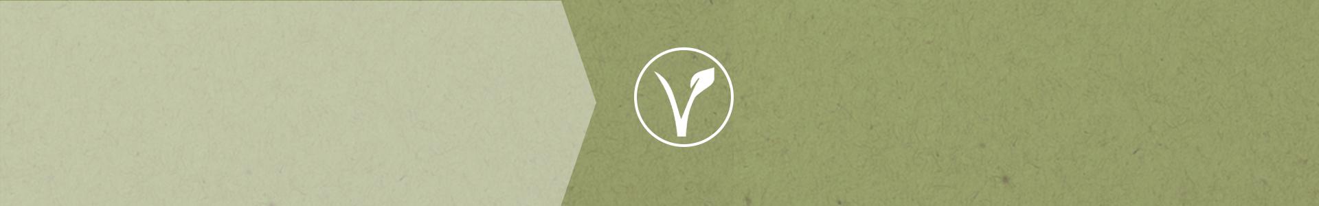 green vegan textured background.