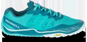 A blue training shoe.