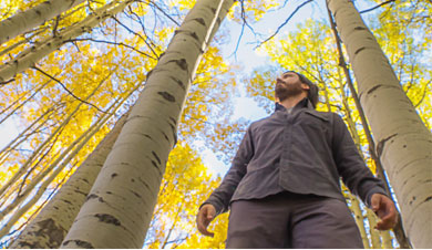 Nick Zupancich standing in a grove of fall aspens.
