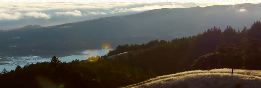 I Am the Trail video poster. A birdseye view of a mountain trail lined with trees.