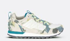 Alpine Shoe